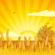 Corn and cultivated sunset background - Image vectorielle