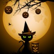 Halloween cat and lanterns — Stock Vector