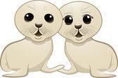 Baby seal couple — Stock Vector