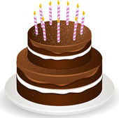 Chocolate brithday cake and candles — Stock Vector
