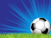 Piłki nożnej na trawie — Wektor stockowy