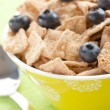 Cinnamon cereals with blueberries — Foto de Stock