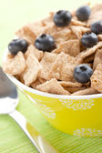 Cinnamon cereals with blueberries — Stock Photo