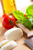Fresh mozzarella with tomato and basil — Stock Photo