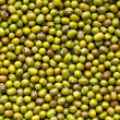 Mung beans — Stock Photo #7109413