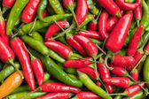 Hot peppers background — Stock Photo