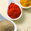 Various spicy powder — Stock Photo