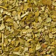 Dried leaves of mate tea — Stock Photo