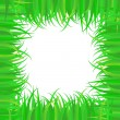 Frame of green grass — Stock Photo