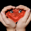Smiling heart in hands — Stock Photo #7909832