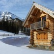 Stock Photo: Log-cabin