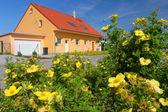 Housing among flowers — Stock Photo