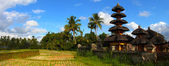 Indonesian landscape, Bali — Stock Photo