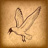 Ave voladora — Vector de stock