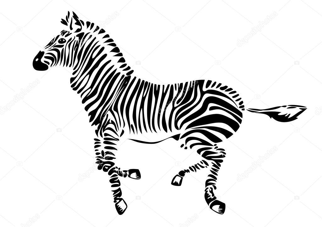 斑马-非洲动物矢量插画