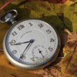 Pocket watch in fall — Stock Photo