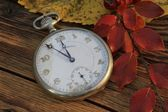 Pocket watch in fall — Stockfoto