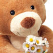Teddy Bear with flowers — Stock Photo