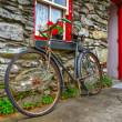 Old rusty bike — Stock Photo #6929719