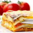 Italian lasagna dish — Stock Photo #6929840
