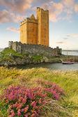 Kilcoe castle — Stock Photo