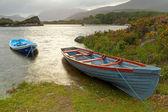 Killarney National Park — Stock Photo