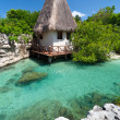 Stock Photo: Idyllic mexicjungle scenery