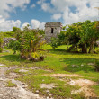 Archaeological ruins of Tulum — Stock Photo #7151112