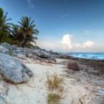 Amazing sunset at Caribbean Sea — Stock Photo #7151161