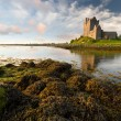Dunguaire castle at sunset — Stock Photo #7346819