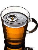 喝杯茶与飞溅 — 图库照片