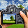 Landscape photography — Stock Photo