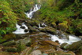 Torc waterfall in Killarney National Park — Photo