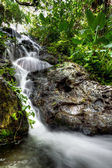 Cascades in Mexican jungle — Стоковое фото