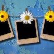Royalty-Free Stock Photo: Blank photo frames on a clothesline