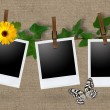 Blank photo frames on a clothesline — Stock Photo