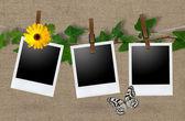 Blank photo frames on a clothesline — Stock Photo