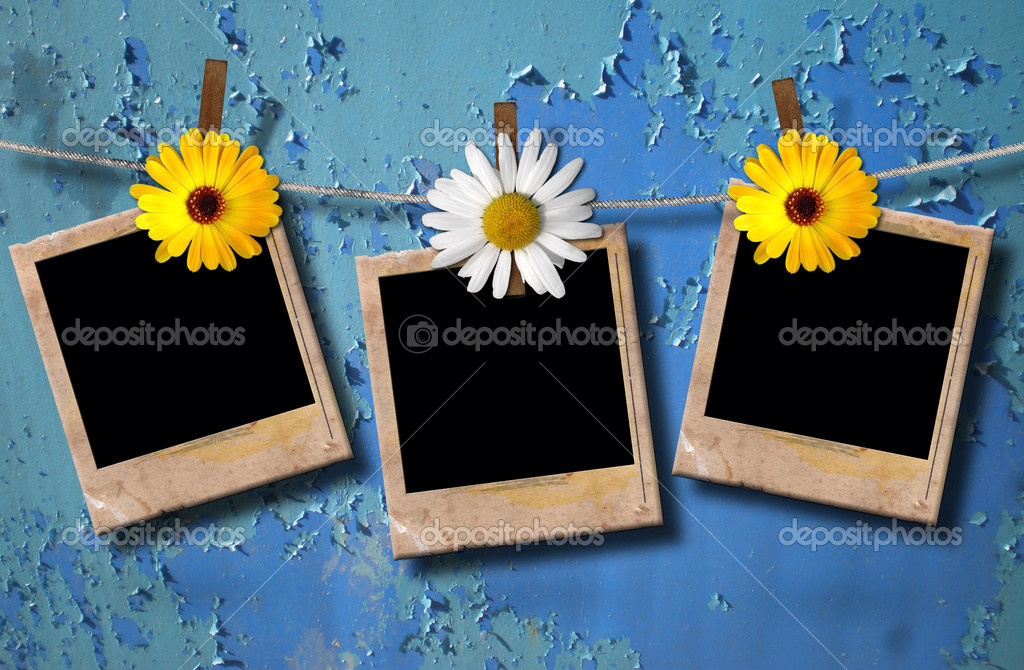 Blank photo frames on a clothesline  with flowers   Stock Photo #6827872