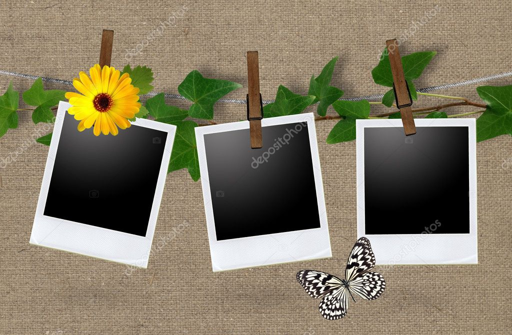 Blank photo frames on a clothesline  — Stockfoto #6827919