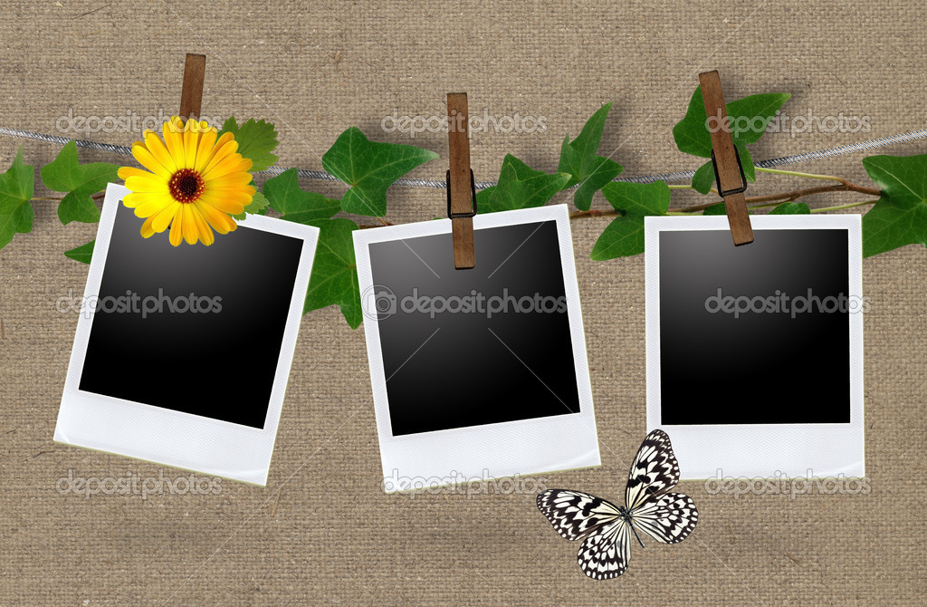 Blank photo frames on a clothesline  — Foto de Stock   #6827919