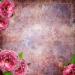 Vintage  background with flowers in scrapb — Stock Photo