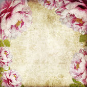 Retro floral background — Stock Photo