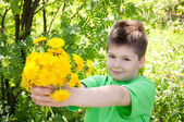 A boy with a bouquet of dandelions in the park — Stock Photo