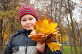The Boy in the autumn park with a bunch of maple leaves — Stock Photo