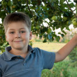 Portrait of a boy on a background of green apples with apples — Stock Photo #7354446