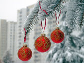 Christmas balls on the snow-covered spruce — Stock Photo