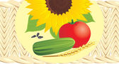 Sunflower with pips, tomato, cucumber and wheat ear on the wattled napkin — Stock Vector