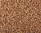 Buckwheat groats — Stock Photo