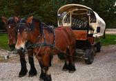 Retro style transport — Stock Photo