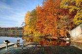 Lugar de la parrilla hermoso en colores otoñales — Foto de Stock